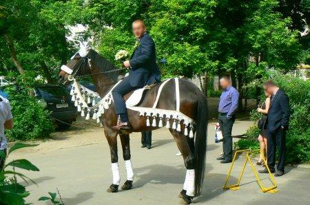 Свадебная конная прогулка